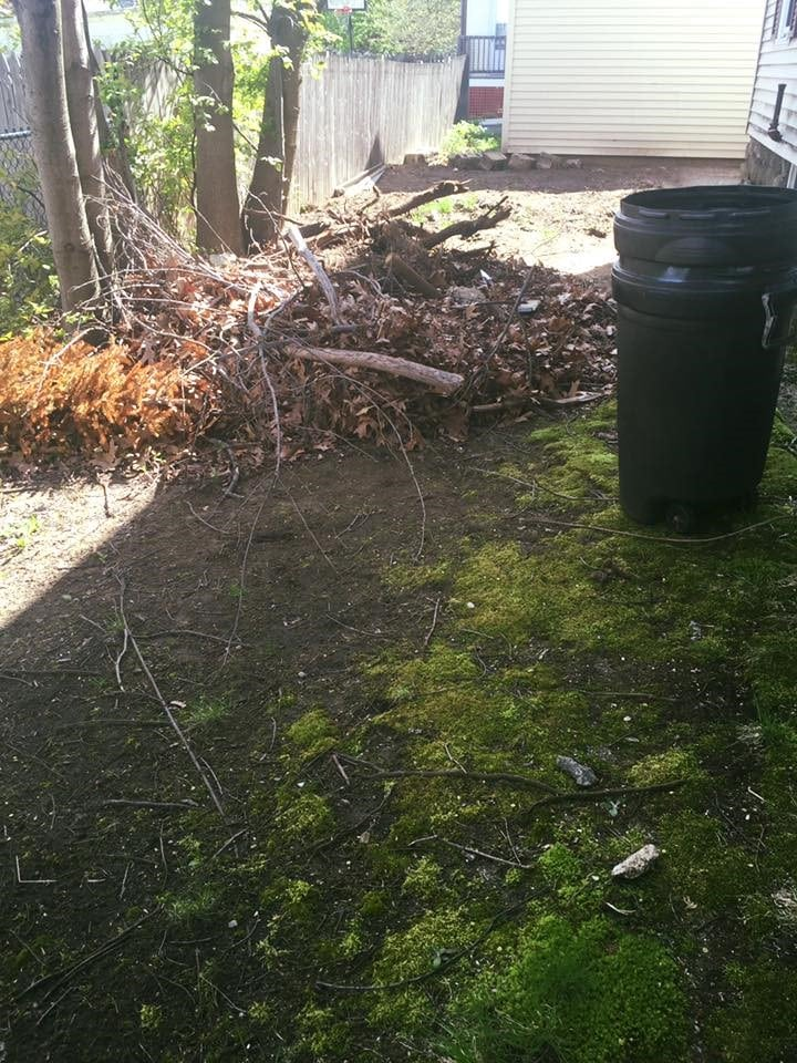 spring clean up job on manchester nh