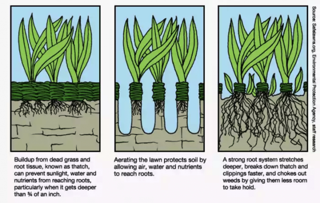 informative diagram that shows how aeration in manchester nh works