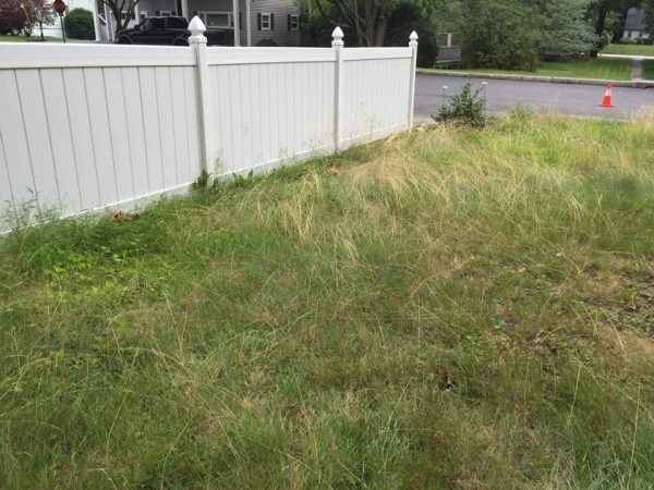 Manchester NH Landscaping and Fall Clean Up job, here's what the lawn looked like before we started doing the maintenance
