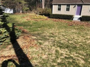 Litchfield NH Lawn Care and Spring Clean Up Service