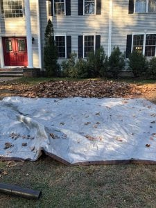 hollis nh leaf removal