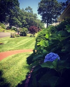 gardening and aeration in manchester nh