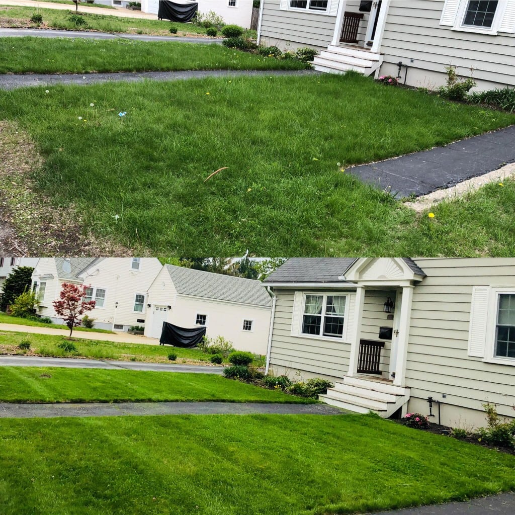 Before and after shot of grass trimming in Manchester NH. Top photo is before, and bottom is after. Photos are of the home from the right side. Mulch is also freshly laid around flower beds along front of home.